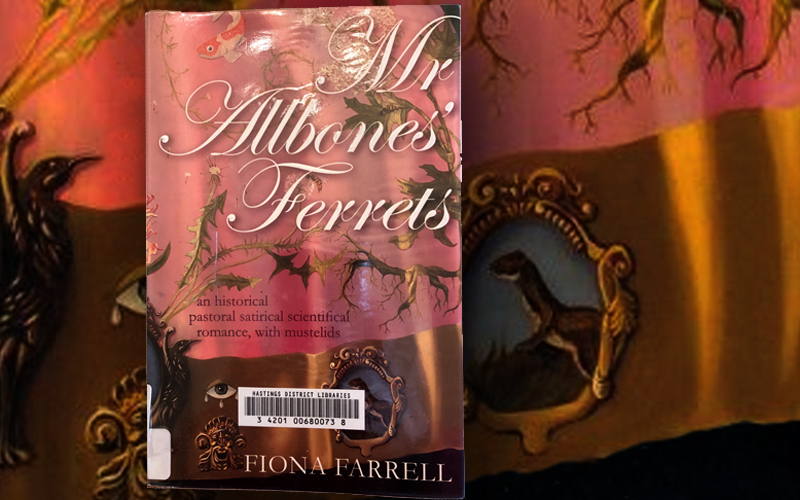Mr Allbones' Ferrets – Book Review