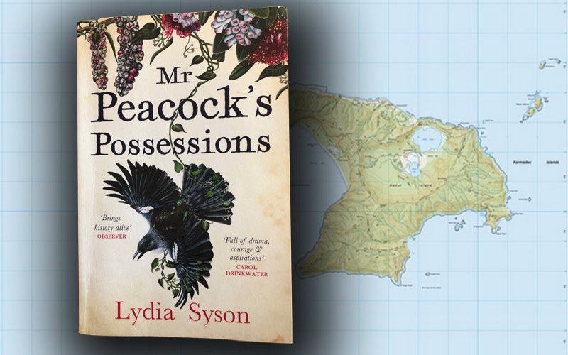 Mr Peacock's Possessions – book review