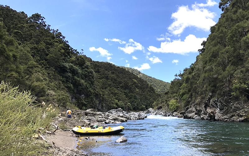 White water rafting Ngaruroro river, New Zealand