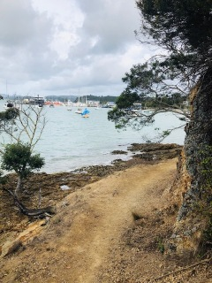 Bay Of Islands running NZ