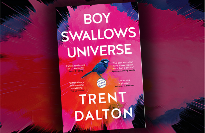 Boy Swallows Universe – book review
